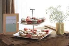 Macarons bicolores