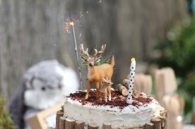 anniversaire thème forêt